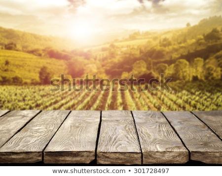 Wooden table in front of vineyard Stock photo © karandaev