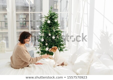 People, animals, relationships, winter holidays concept. Pleased woman holds paw of jack russell ter Stock photo © vkstudio