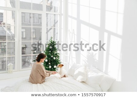 People, animals, holiday, joy concept. Brunette adult woman with jack russell terrier dog on bed, en Stock photo © vkstudio