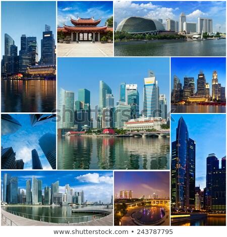 Mozaik kolaj Singapur turist seyahat Stok fotoğraf © dmitry_rukhlenko