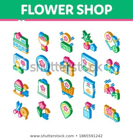 бутик изометрический вектора цветок Сток-фото © pikepicture