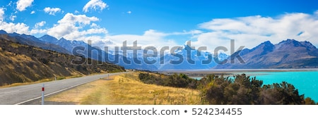 Mountain Cook Panorama New Zealand Stock photo © vichie81