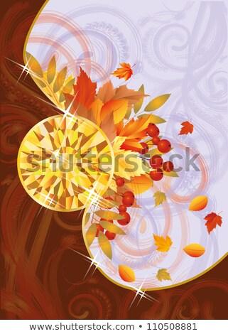 Autumn card with topaz, vector illustration Stock photo © carodi