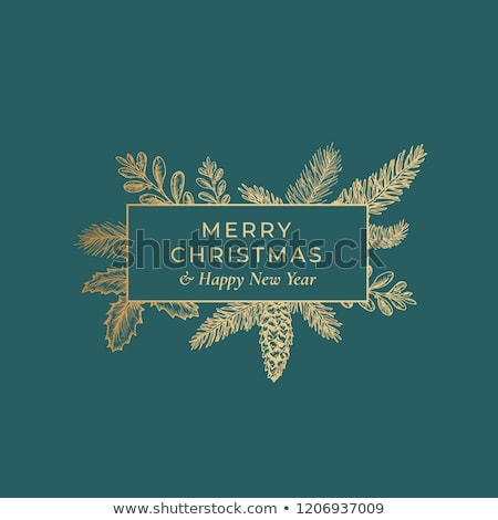 Christmas Card with Holly on a Green Background Stock photo © fenton