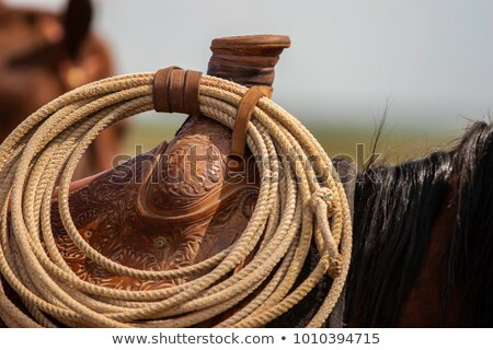 Saddle Horn Stock photo © rhamm