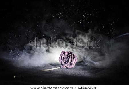 Stock fotó: Halott · szeretet · emberek · beszél · összetört · szív · férfi