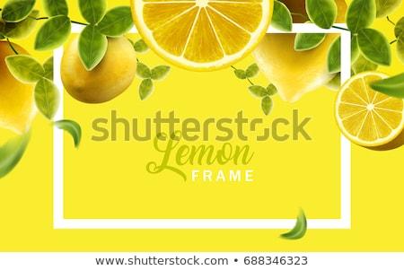 Stockfoto: Vector · citroenen · meer · abstract · achtergronden · bezoeken
