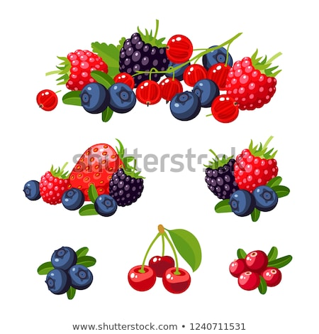 Cseresznye bogyós gyümölcs piros mezőgazdaság friss édes Stock fotó © M-studio