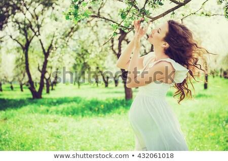 беременная женщина цветок яблони весны лет Сток-фото © Discovod