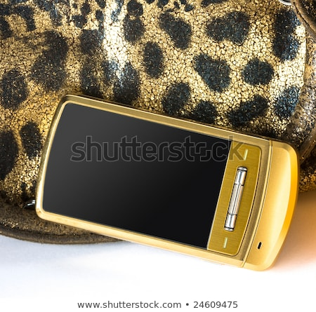 womanish yellow leather bag stock photo © homydesign