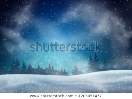 Snowy field at winter night Stock photo © Juhku