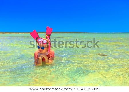 little lagoon Stock photo © Kayco