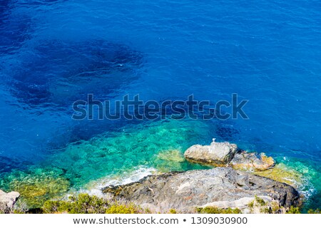 Ada plaj yaz görmek sahil İtalya Stok fotoğraf © Antonio-S