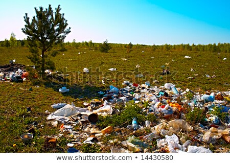 Heap of the rubbish on timber glade Stock photo © Zhukow