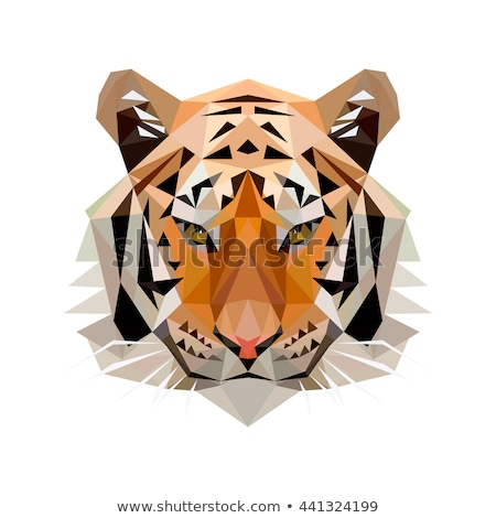 Geometric polygon tiger head, triangle pattern design, vector il Stock photo © BlueLela