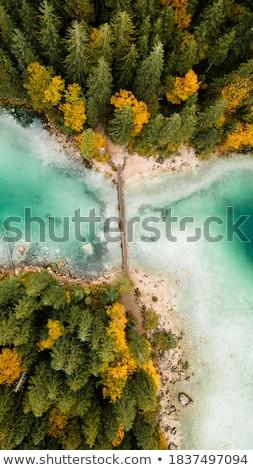 Jesienią powyżej rzeki lustra obraz drewna Zdjęcia stock © lypnyk2
