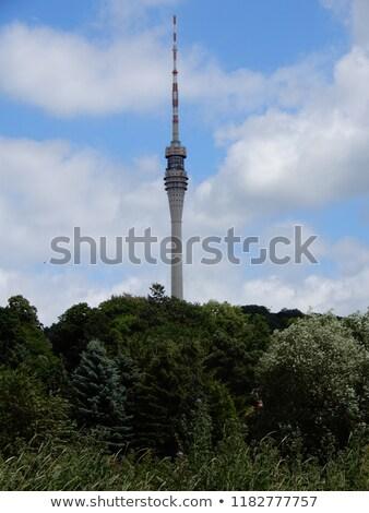 Towers in Dresden Stock photo © elxeneize