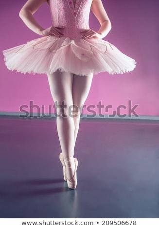 изящный балерины Постоянный балет студию Dance Сток-фото © wavebreak_media