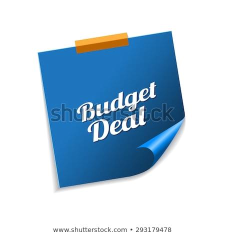 Költségvetés üzlet kék cetlik vektor ikon Stock fotó © rizwanali3d