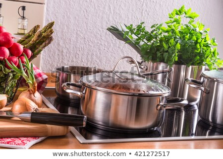 Grande aço inoxidável fogão cozinha porta interior Foto stock © Hofmeester