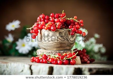 Kırmızı frenk üzümü reçel kavanoz cam stüdyo Stok fotoğraf © Digifoodstock