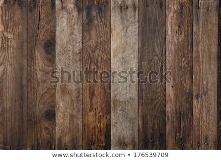 Resistiu rústico textura madeira Foto stock © stevanovicigor