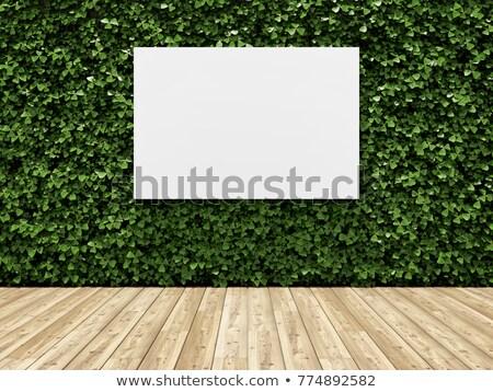 Banner stanza vuota muro scatole impianti Foto d'archivio © feverpitch