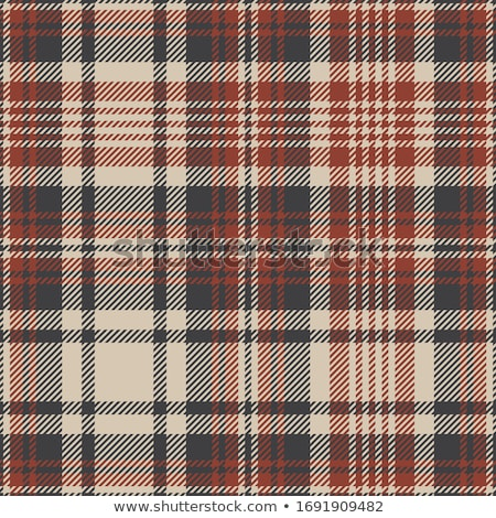 Checked cloth pattern Stock photo © szefei