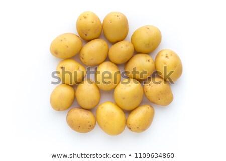 Yeni patates mükemmel sarı Stok fotoğraf © zhekos