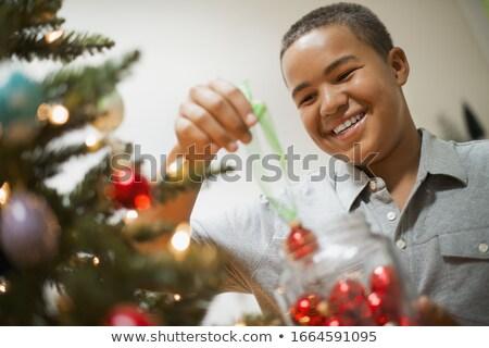 Pre-adolescent boy holding tree Stock photo © IS2
