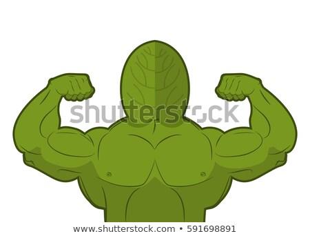 Potente spinaci forte impianto grande muscoli Foto d'archivio © popaukropa