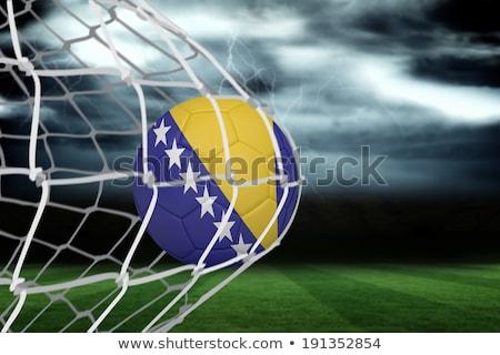 Balón de fútbol objetivo neto Bosnia Herzegovina bandera fútbol Foto stock © wavebreak_media