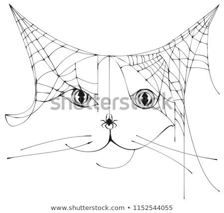 Pajęczyna sylwetka kot głowie symbol Zdjęcia stock © orensila