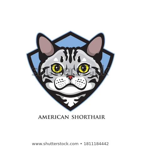 Stock photo: Cat and Shield heraldic symbol. Pet for coat of arms. Vector ill