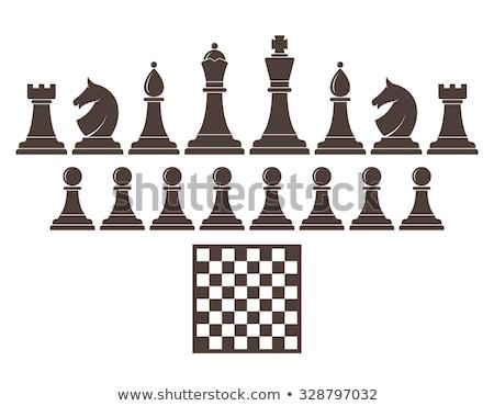 Шахматный король иллюстрация царя белый флаг игры Сток-фото © lenm