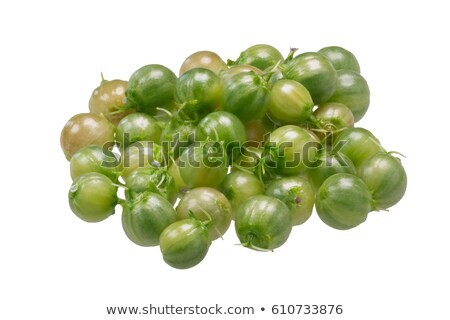 Fresh coriander fruits, path Stock photo © maxsol7