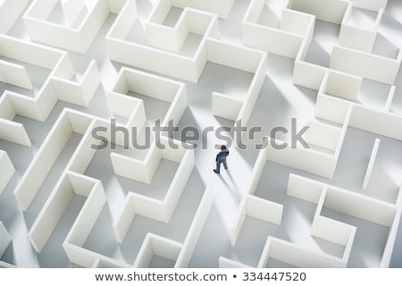 Businessman standing on the top of a maze Stock photo © ra2studio