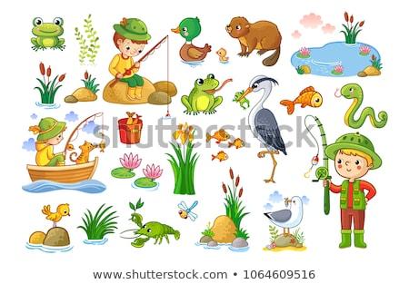 Set animale stagno illustrazione primavera erba Foto d'archivio © bluering