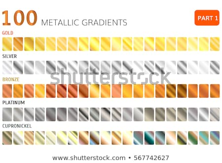 set of silver or platinum gradients Stock photo © SArts