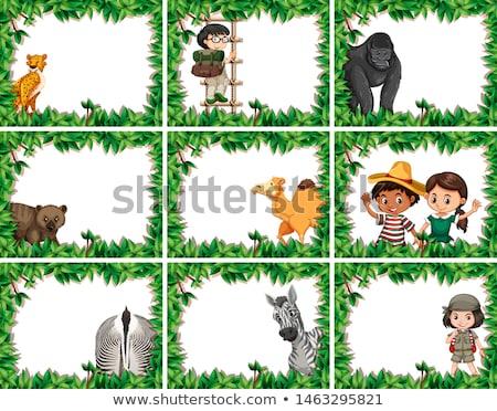 Animaux cadres guépard ape chameau zèbre Photo stock © bluering