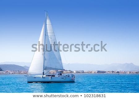 fehér · vitorlázik · tenger · idilli · nyáridő · díszlet - stock fotó © karandaev