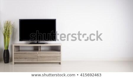 Płaski ekran LCD telewizji salon wnętrza Zdjęcia stock © AndreyPopov
