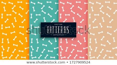 Ossa pattern quattro colori set sfondo Foto d'archivio © SArts