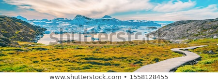 Hiking trail path in Greenland arctic nature landscape with icebergs in Ilulissat icefjord Stock photo © Maridav