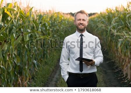 удовлетворенный · улыбаясь · бизнесмен · Постоянный · зеленый · улице - Сток-фото © hasloo
