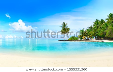 Landscape from coastline Stock photo © ivonnewierink