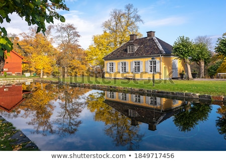 old wooden house in water Stock photo © basel101658