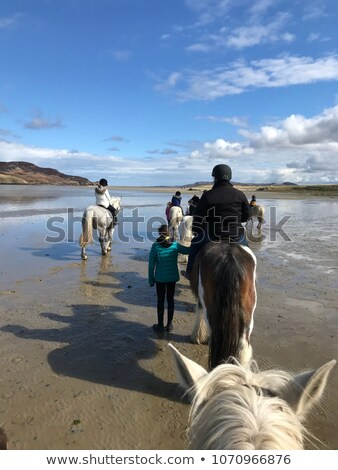 Poney trekking plage vue belle homme Photo stock © morrbyte