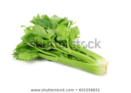 Leaves of cut celery Stock photo © ivonnewierink
