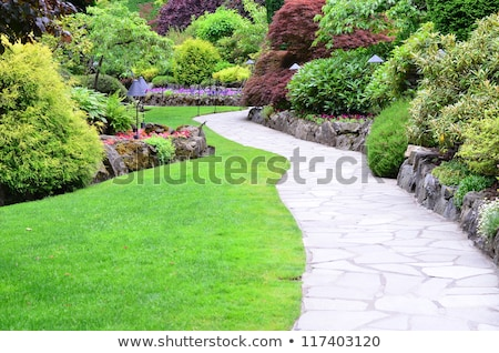 Winding Path in a Peaceful Landscape Garden Stock photo © pinkblue